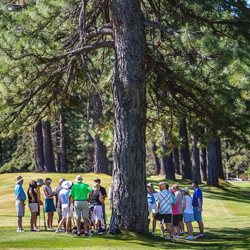 golf lessons graeagle2